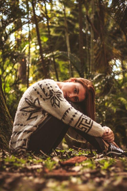 aantrekkelijk mooi, bladeren, bomen
