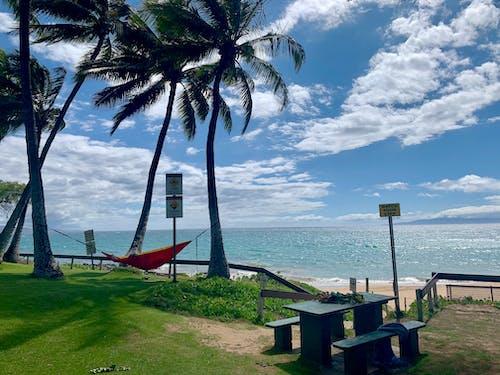 Δωρεάν στοκ φωτογραφιών με αιώρα, καρέκλα παραλίας, παραλία, παραλία άμμο