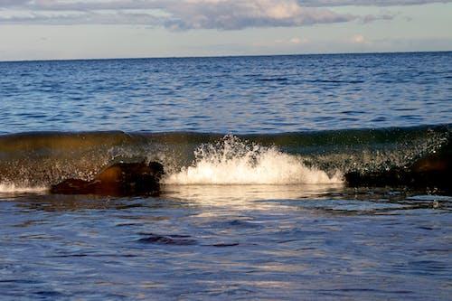 Δωρεάν στοκ φωτογραφιών με κύμα παραλίας, παραλία