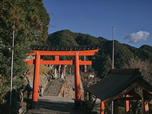 Δωρεάν στοκ φωτογραφιών με shinto, αρχιτεκτονική, Ασιατική αρχιτεκτονική, βήματα