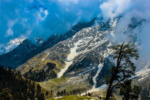 Imagine de stoc gratuită din #natură, apă curgătoare, arbori, aventură
