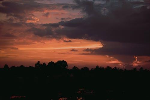 光, 剪影, 晚間, 樹木 的 免費圖庫相片