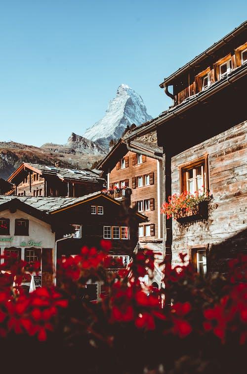 Δωρεάν στοκ φωτογραφιών με αρχιτεκτονική, αστικός, βουνό, γραφικός