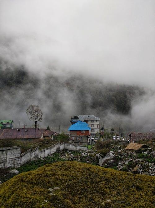 Δωρεάν στοκ φωτογραφιών με βουνό, γρασίδι, γραφικός, δέντρα