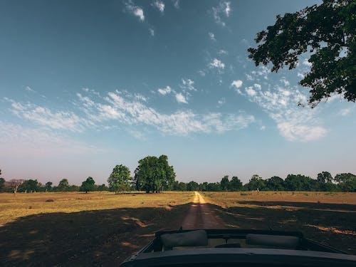 Gratis lagerfoto af bane, bil, dagslys, grusvej