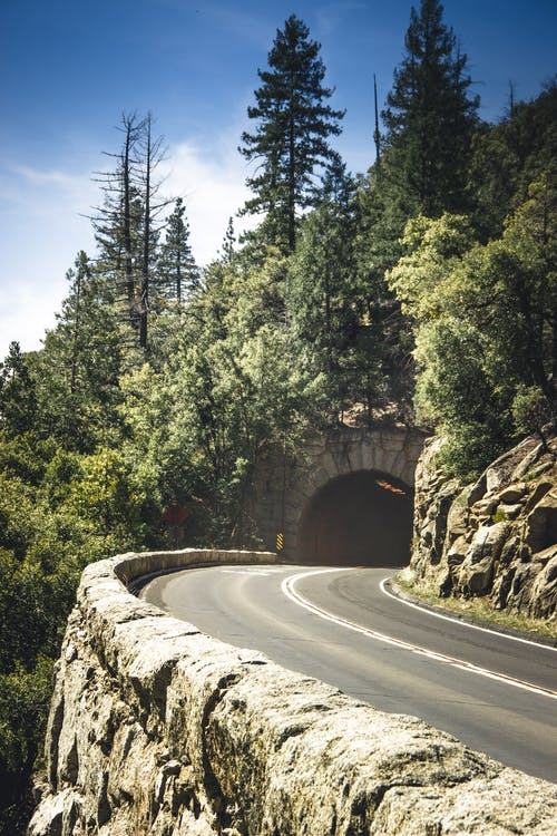 Selective Focus Photo of Curved  Empty Road with a Tunnel