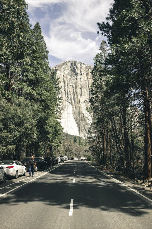 Photo of Asphalt Road Pathway between Tall  Trees with Cars Parked Beside  Near High Mountain