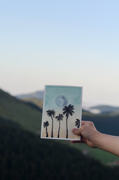 Selective Focus Photo of a Hand Holding Picture of Palm Trees