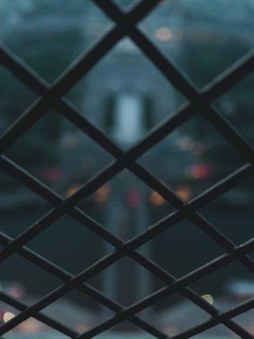 คลังภาพถ่ายฟรี ของ กั้นรั้ว, ความชัดลึก, พร่ามัว, มุ่งเน้น