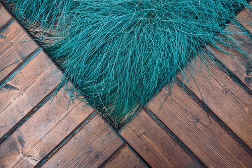 Green Grass on Brown Wooden Floor