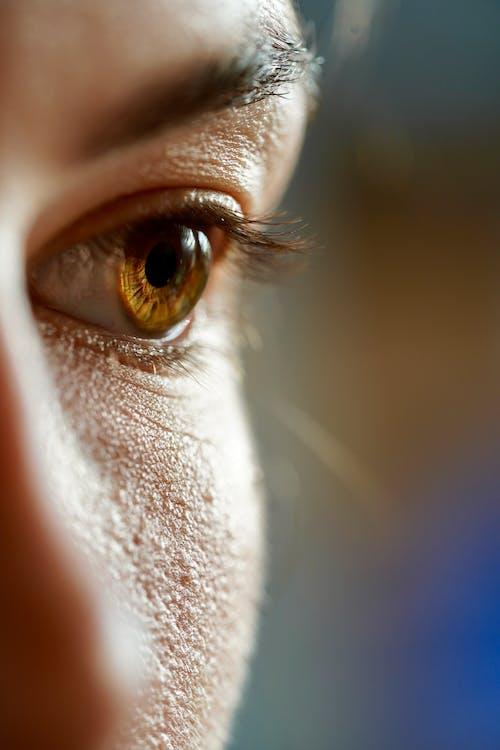 Foto d'estoc gratuïta de dona, globus ocular, macro, pell
