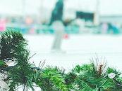 nature, person, winter
