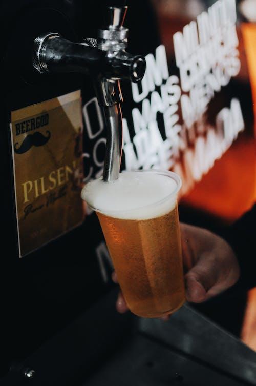 Základová fotografie zdarma na téma alkoholický nápoj, bar, hospoda, kapalina