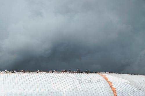 Бесплатное стоковое фото с архитектура, Архитектурное проектирование, буря, ветер