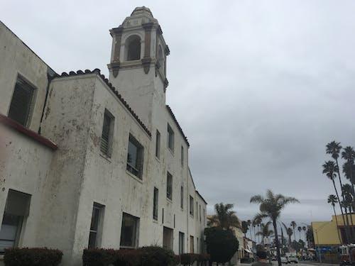 Free stock photo of church building, palms
