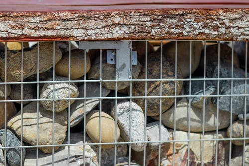 Darmowe zdjęcie z galerii z borneo, drewno, kamień, kkcity