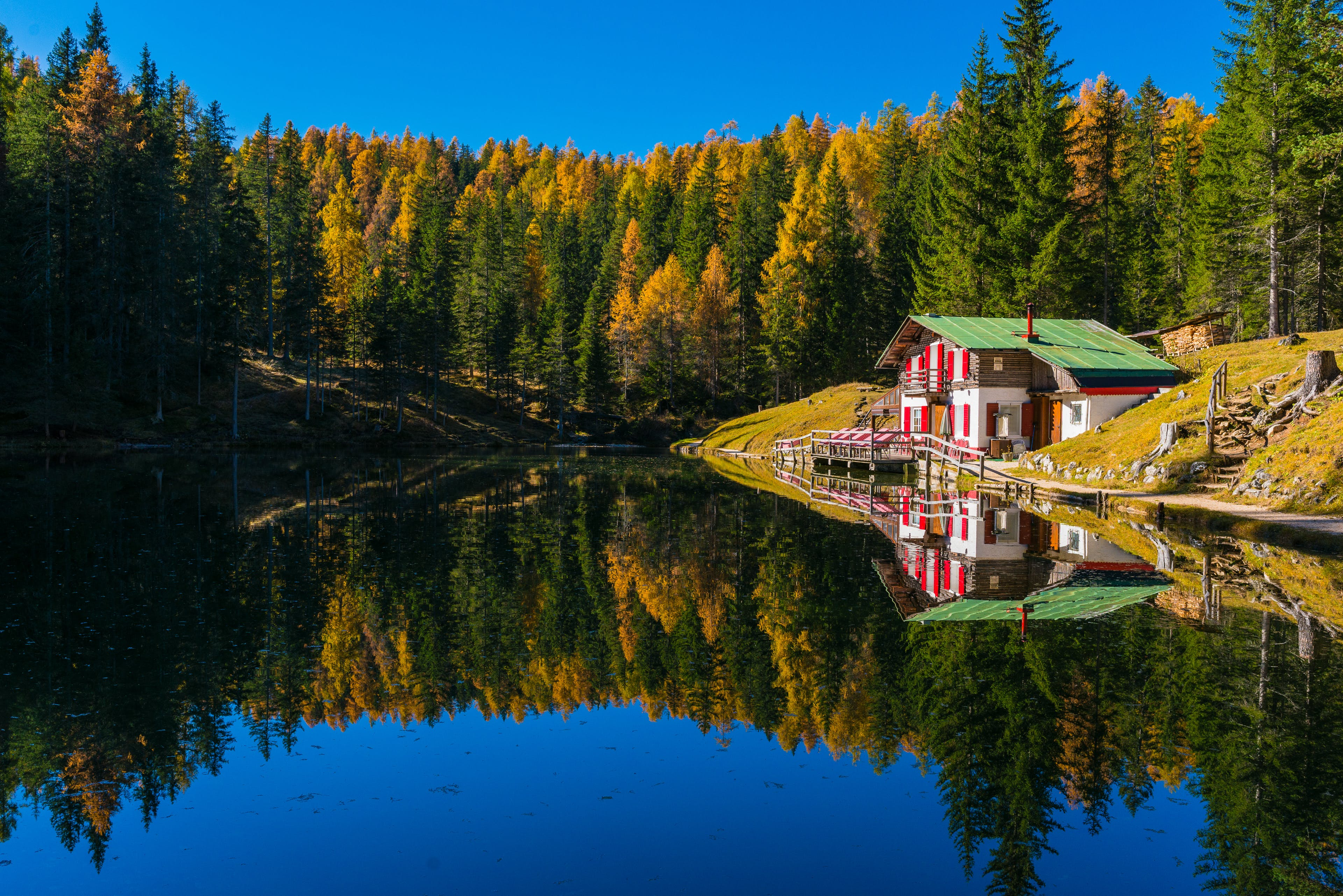House Beside Lake Surrounded by Trees