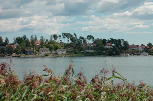 Free stock photo of lake house
