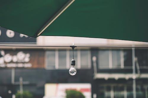 Základová fotografie zdarma na téma drát, elektrické vedení, klidný, osamělý