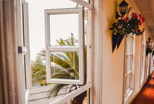 Fotos de stock gratuitas de luz de la ventana, ventana de cristal