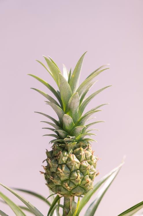 ананас, вкусный, еда