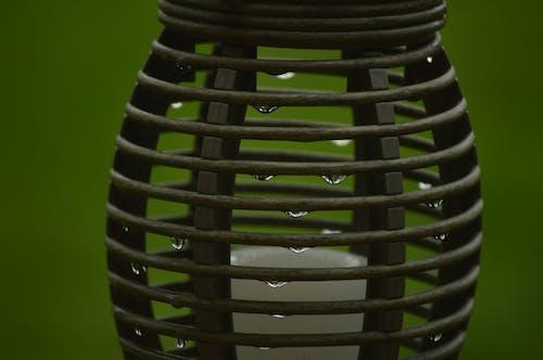 容器, 水滴, 濡れる, 閉じるの無料の写真素材