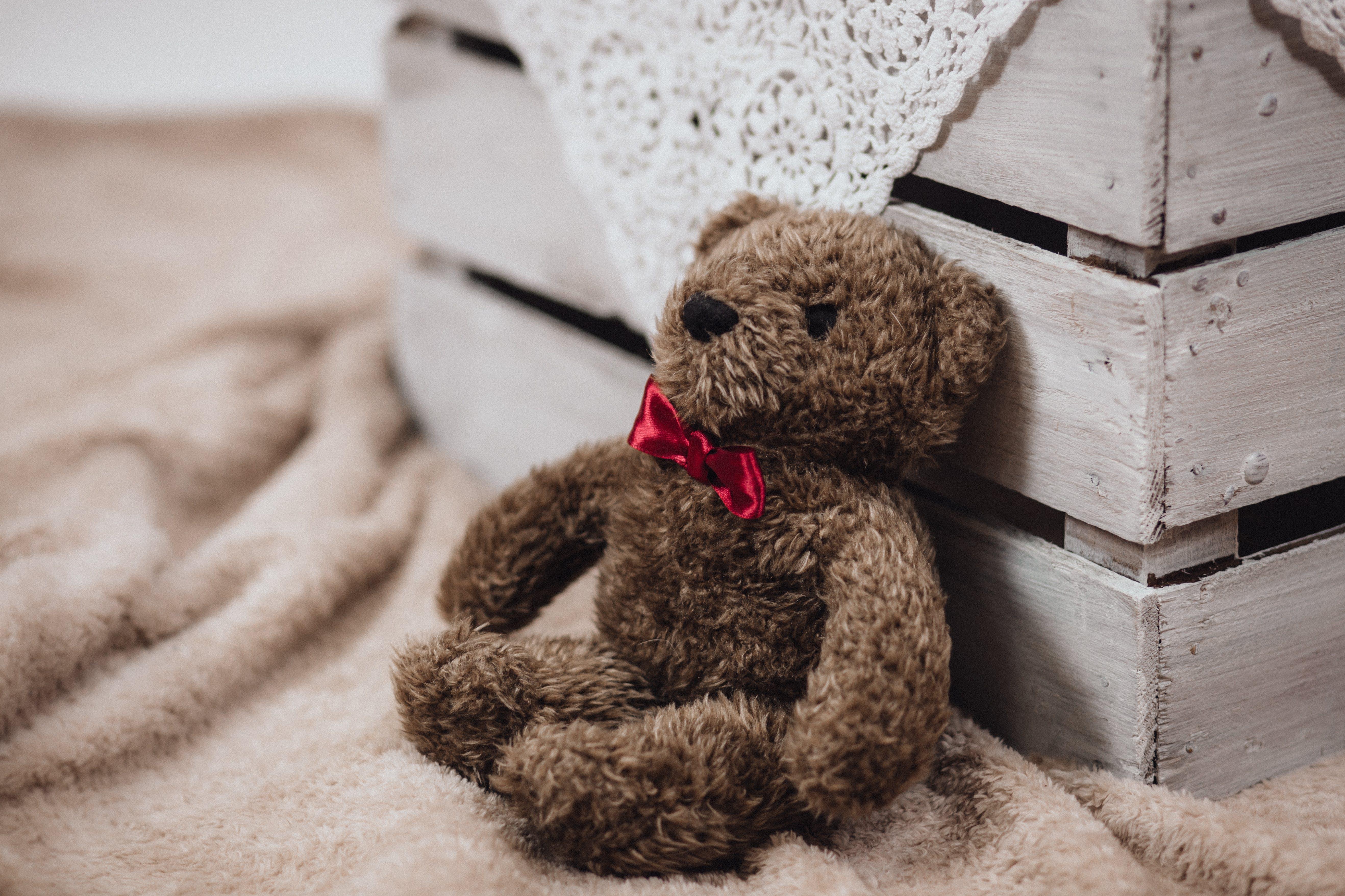 cute, stuffed toy, teddy bear