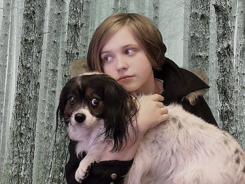 Immagine gratuita di alberi, animale, cane, foresta