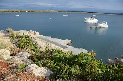 Fotobanka sbezplatnými fotkami na tému Chorvátsko, člny, Jadranské more, krásny