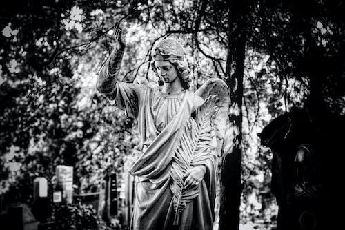 Free stock photo of angel, graveyard, sculpture