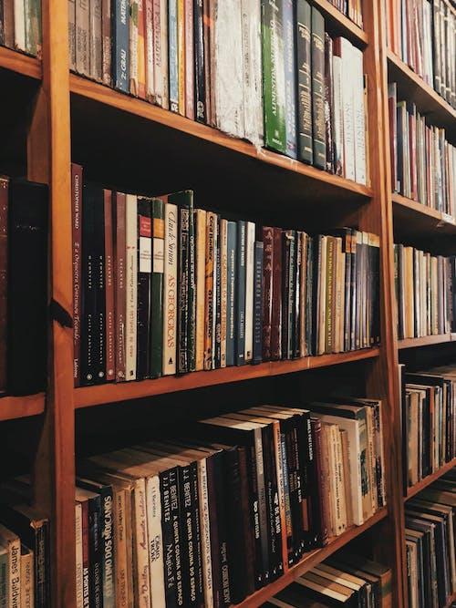 Gratis lagerfoto af bibliotek, bogbind, boghandel, boghylde