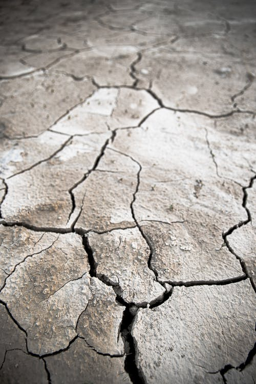 Free stock photo of climate, climate change, cracks, dehydration