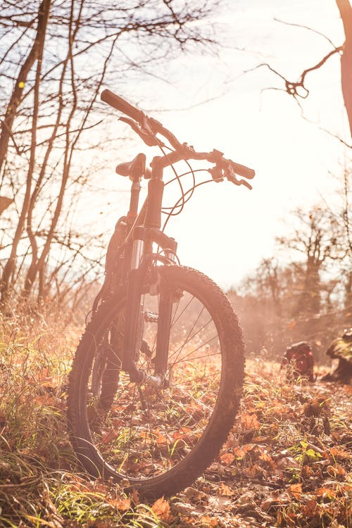 Black Bicycle on Brown Grass Field