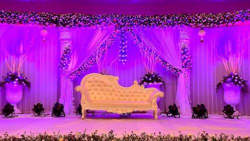 Immagine gratuita di cerimonia, illuminazione, sedia, viola