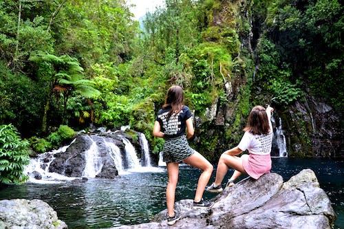 Foto d'estoc gratuïta de a l'aire lliure, arbres, aventura, cascades