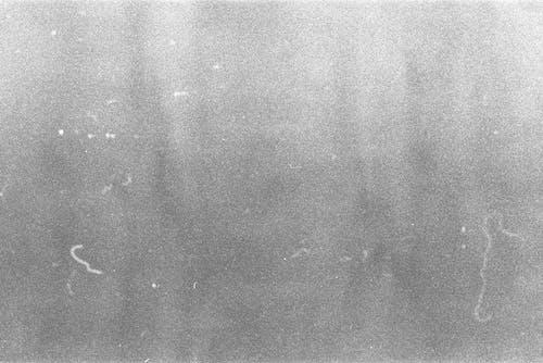 Free stock photo of 35mm, grain, texture
