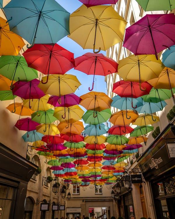 Základová fotografie zdarma na téma barevný, barvy, deštníky