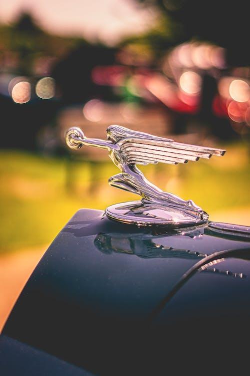 Darmowe zdjęcie z galerii z kaptur, klasyczny samochód, ornament, pojazd