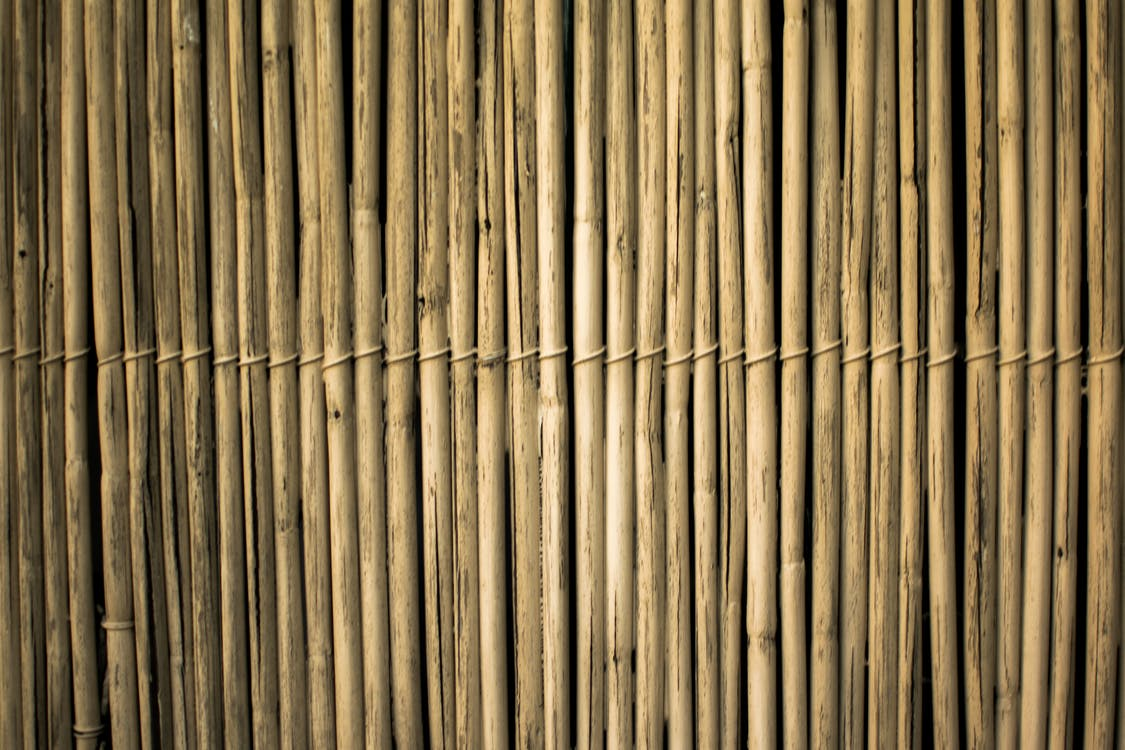 bambus, design, fægte