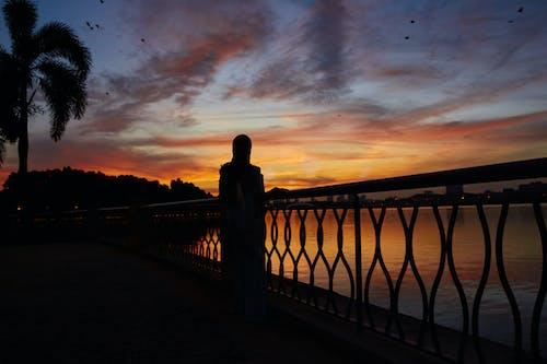 실루엣, 일몰, 황홀한 하늘의 무료 스톡 사진