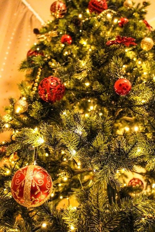 Foto profissional grátis de abeto, acessório, árvore, árvore de Natal