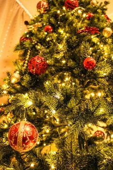 Free stock photo of blur, tree, sphere, decoration