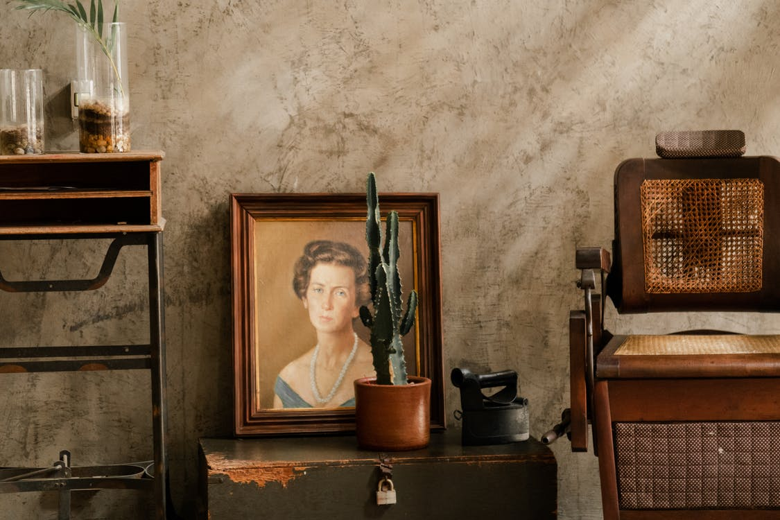 Photo of Cactus in Front of a Woman's Portrait Painting