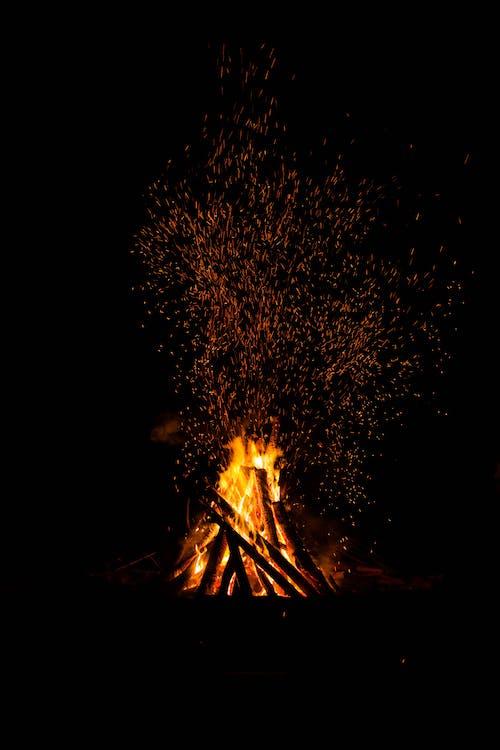 オレンジ色, キャンピング, キャンプの無料の写真素材
