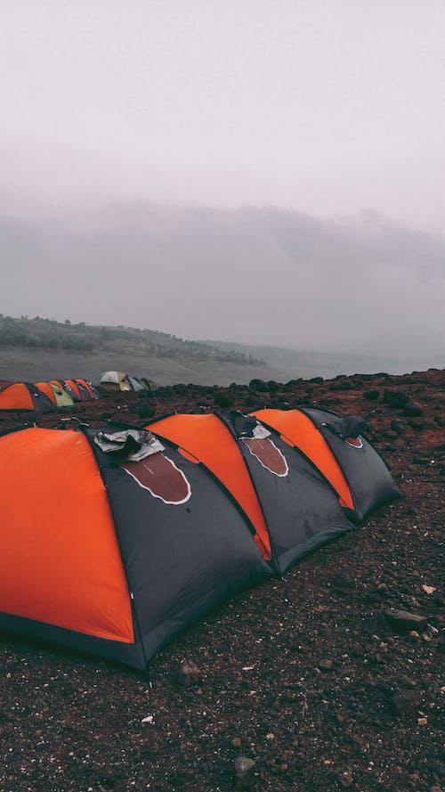 Gratis lagerfoto af Camping, rejse, telt, tidligt om morgenen