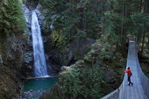 Photo of Man Standing on Hanging Bridge Looking at Waterfalls