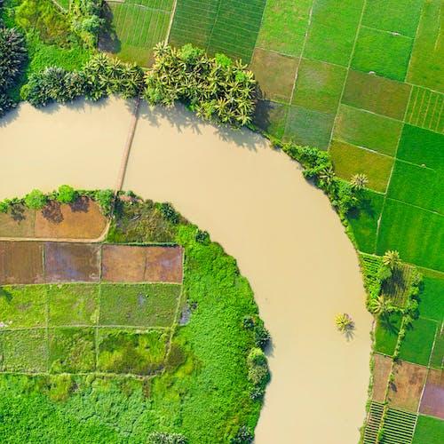 Ảnh lưu trữ miễn phí về bắn từ trên không, cây xanh, chụp ảnh trên không, con sông