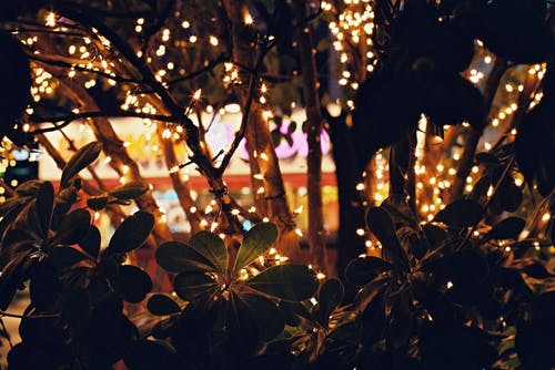 Foto profissional grátis de dezembro, Natal