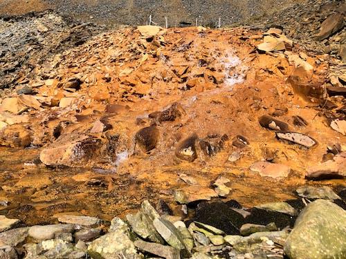 ellanvalley, 威爾斯, 山, 山丘 的 免費圖庫相片