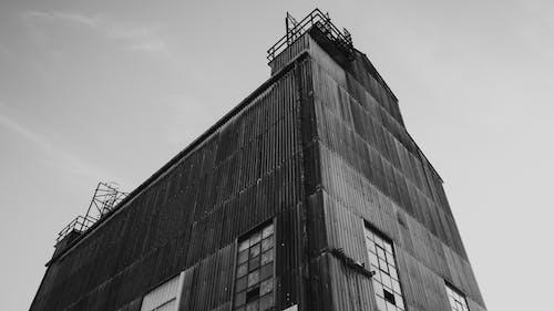 건축, 늙은, 모노, 모노톤의의 무료 스톡 사진